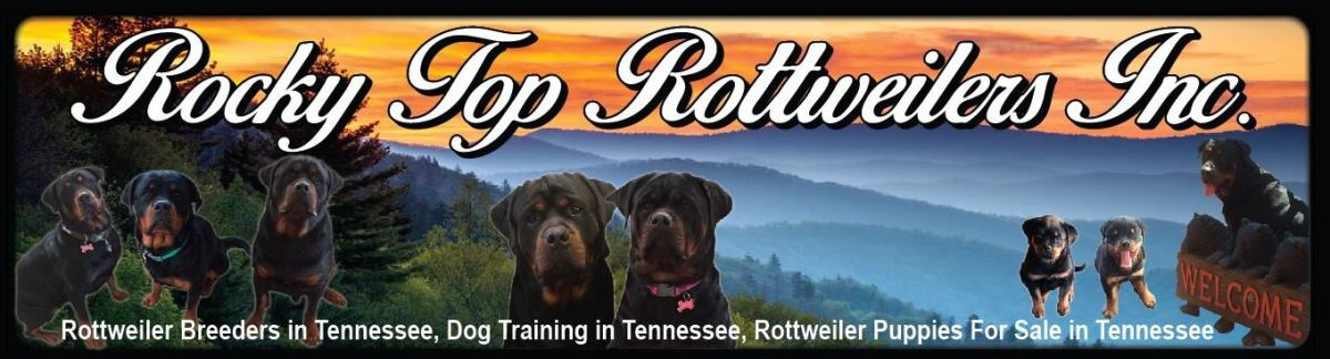 Rocky Top Rottweilers Inc.